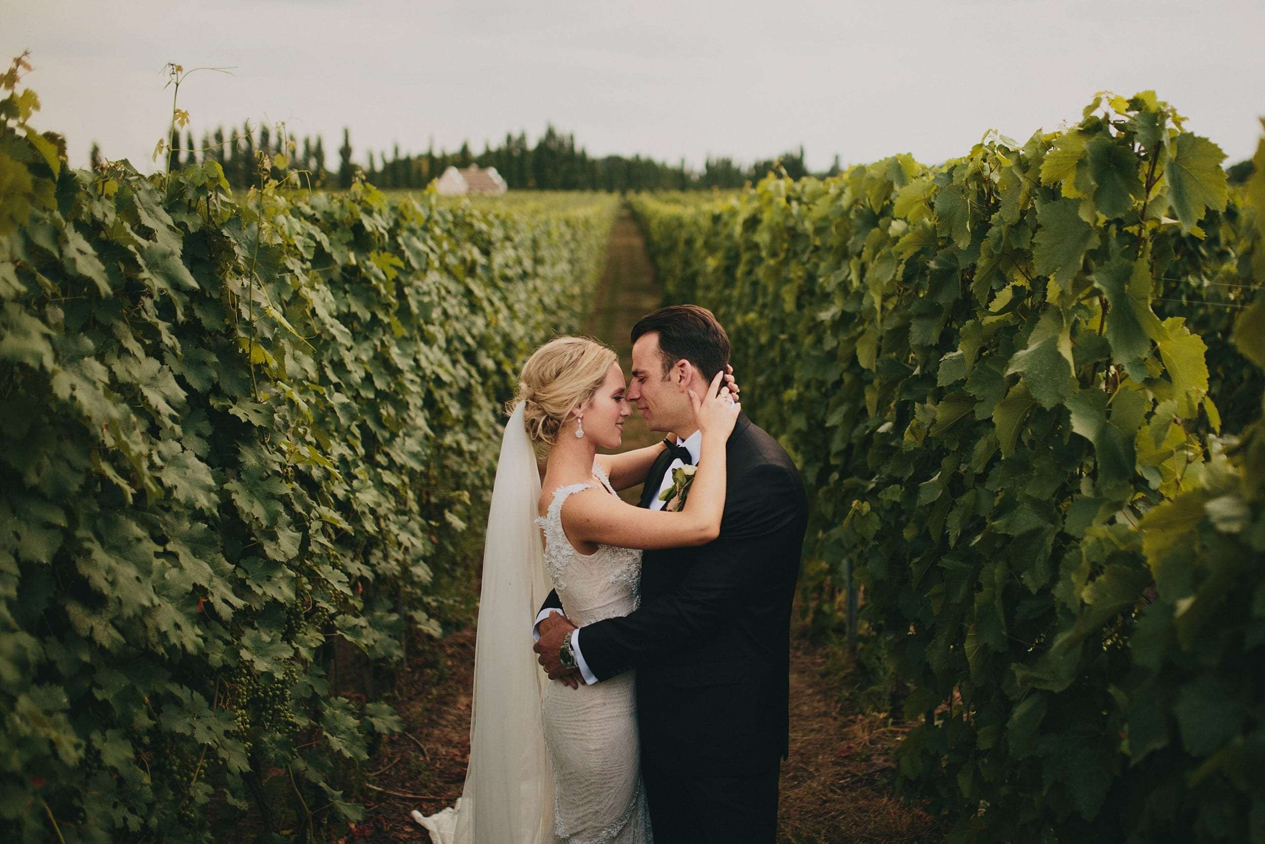 A newlywed couple hugging each other among vineyards in Tuscany