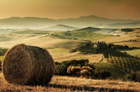 Bale of hay in a Tuscan landscape